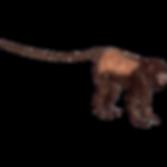 howler-monkey-png-transparent_edited_edi