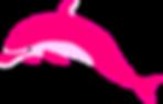 pink-dolphinnnnnnnnnnnn_edited.png