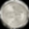 2019-NYWSC-Silver.png