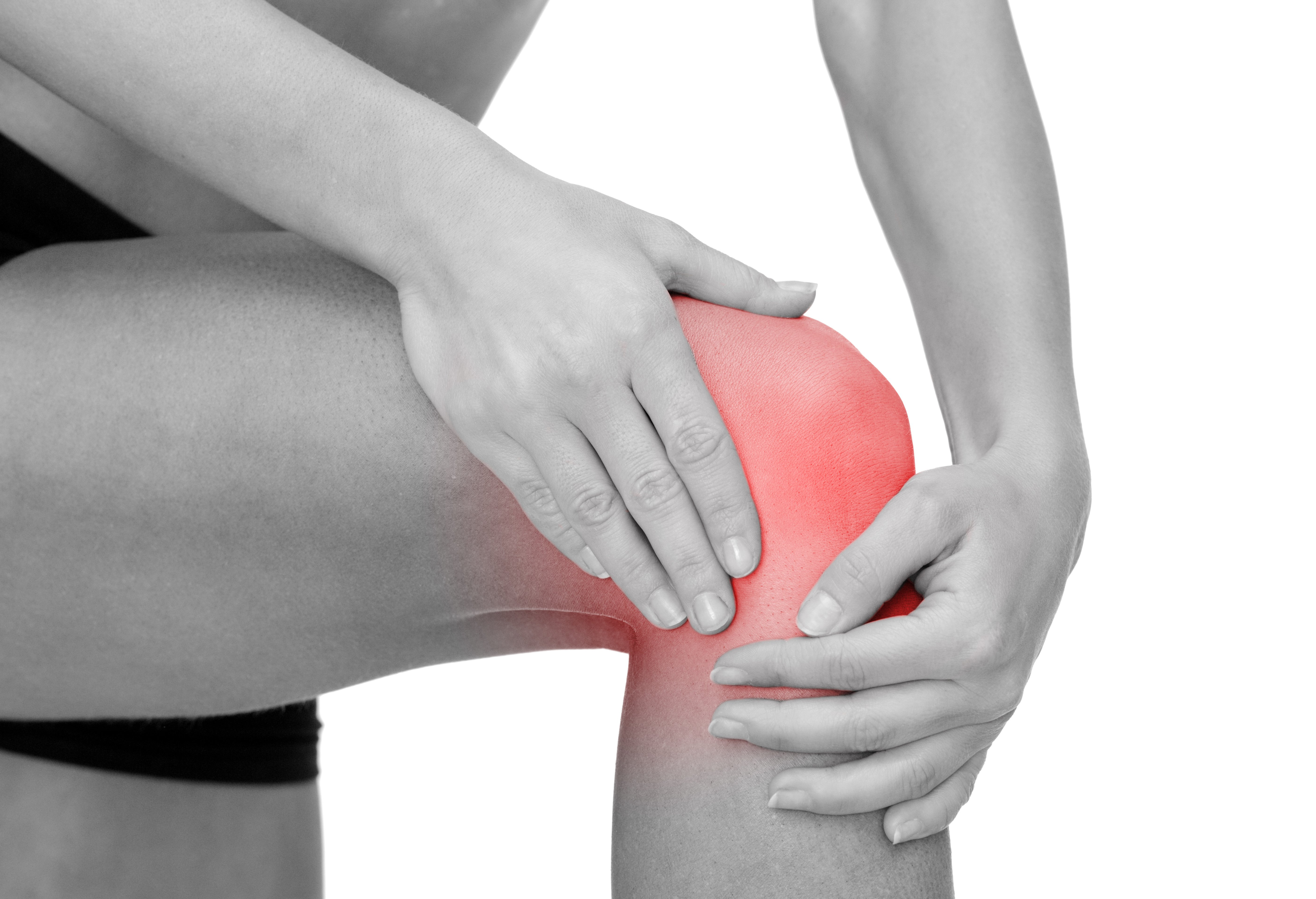 knee pain and muscle imbalance | trubody wellness | wellness studio, Skeleton