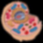 image_23480410.png