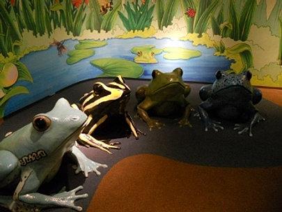 Masonmetu Cincinnati Zoo Newport Aquarium