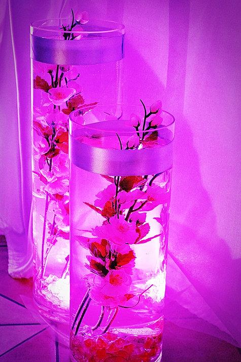 Podświetlenie kwiatów w wodzie