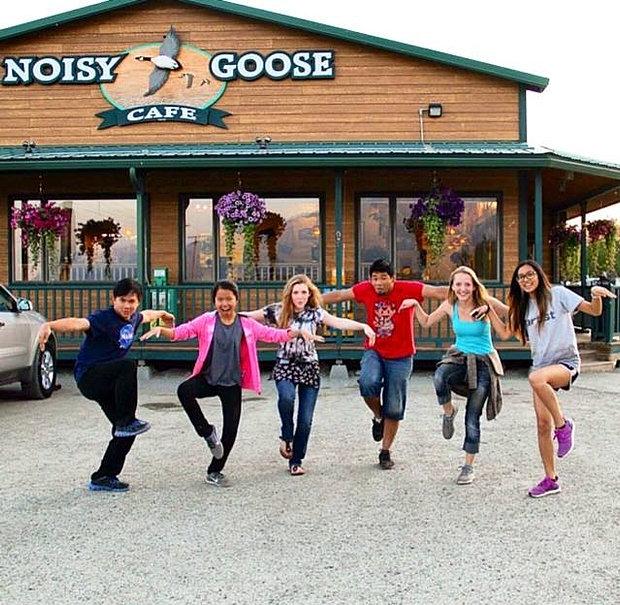 Noisy Goose Cafe, Palmer Alaska