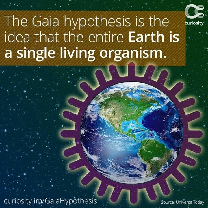 Gaia hypothesis summary