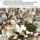 Schweizer Bienenzeitung.png