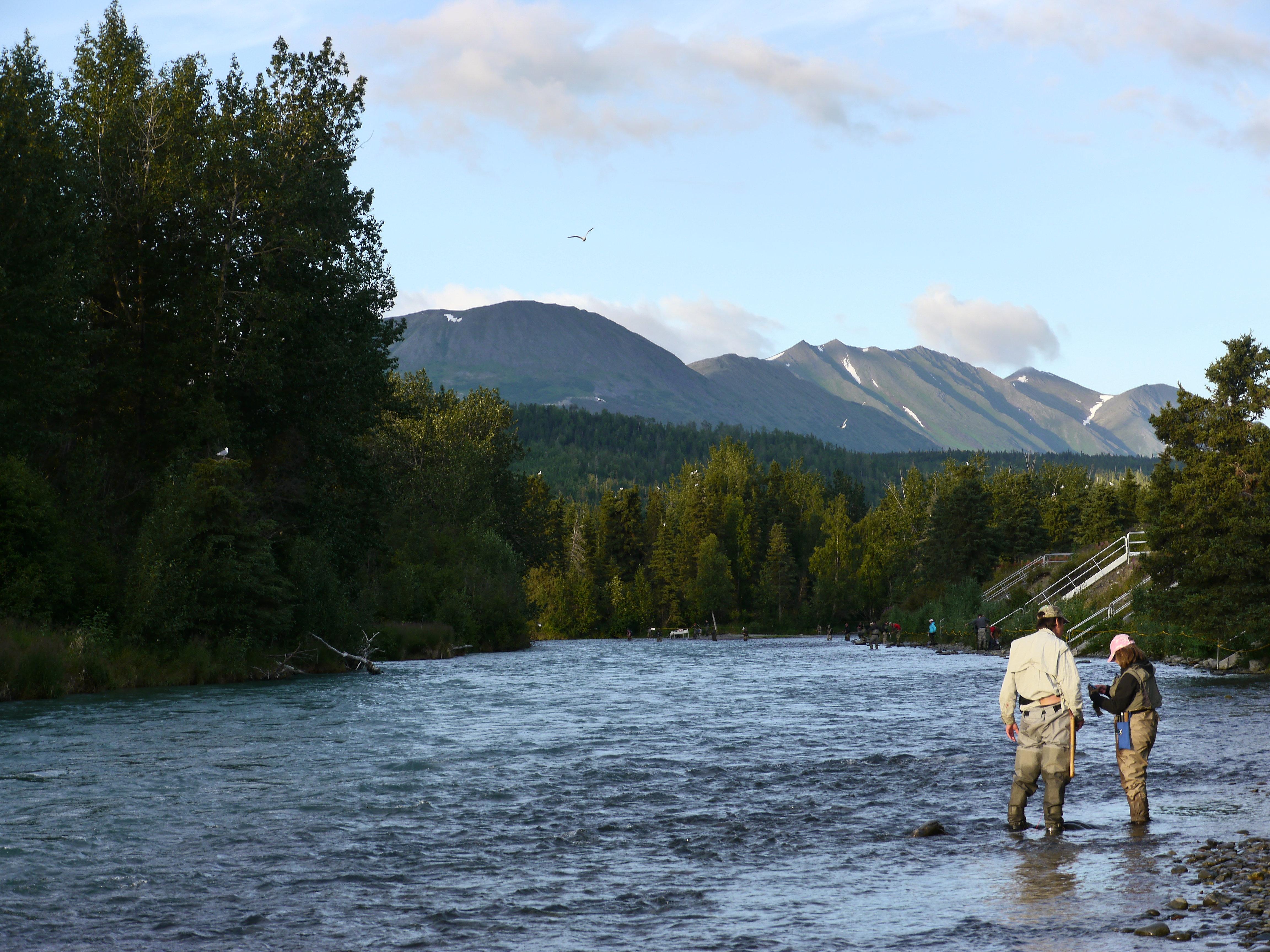 Gwins lodge alaska lodge cabins on the kenai peninsula for Alaska fishing lodge