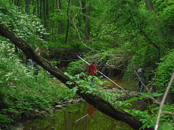 Earth Day Creek CleanUp