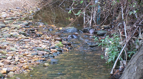 Stream- Kondé family Sept 2012