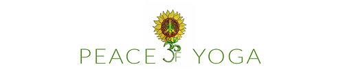 yoga in st petersburg, yoga for everyone, beginners yoga in st pete, workshops, events, hatha yoga, flow yoga