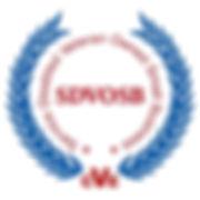 SDVOSB Logo (2).jpg