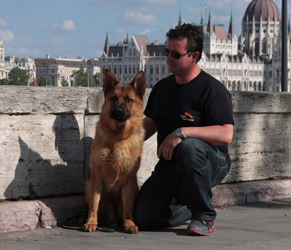 Budapesta WDS 2013