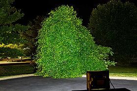 Iluminacion exterior con reflectores led