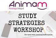 Study%20Strategies%20Workshop_edited.jpg