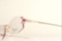ハピネスFD0A0096_edited.png