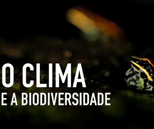 19 biodiversidade.png