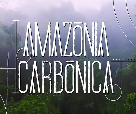 9 amazonia carbonica.png