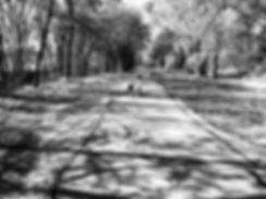 Park_Adventures_1.jpg