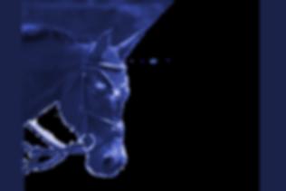 jlb%252520backgroundjimmy2_edited_edited