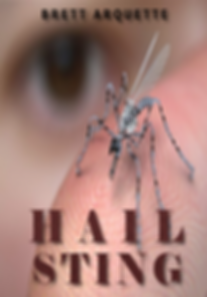 HAIL-STING-FRONT-4.png