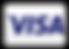 visa-alternate.png