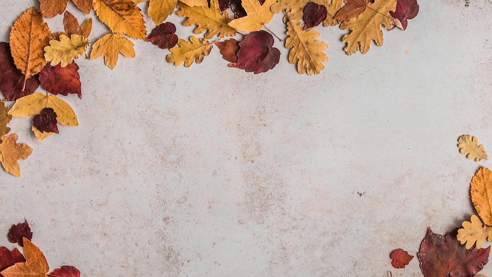 Harvest Background 02.jpg