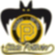 nv logo SP Baseball.jpg