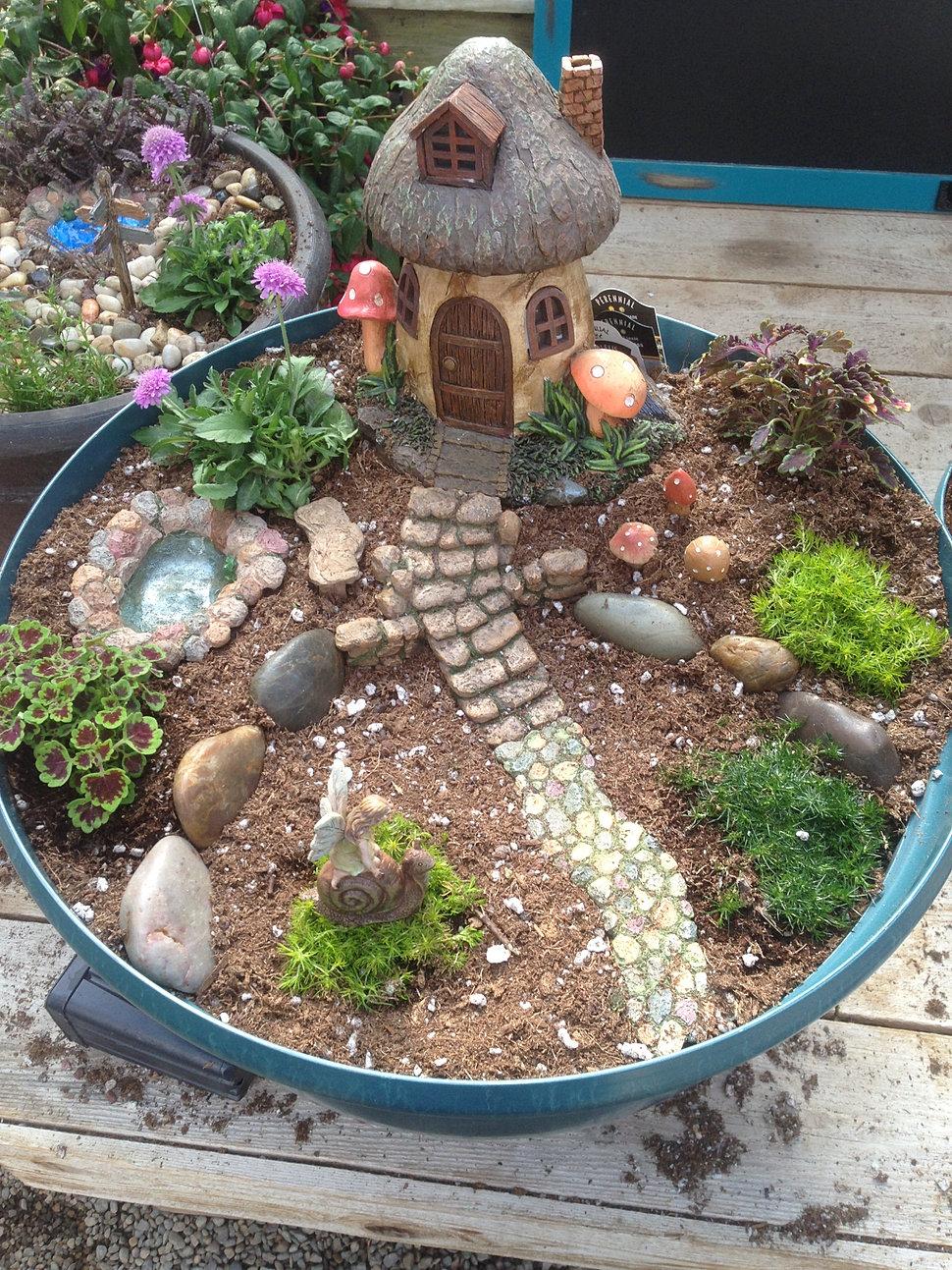 Logan Utah Greenhouse And Garden Center Fairy Garden