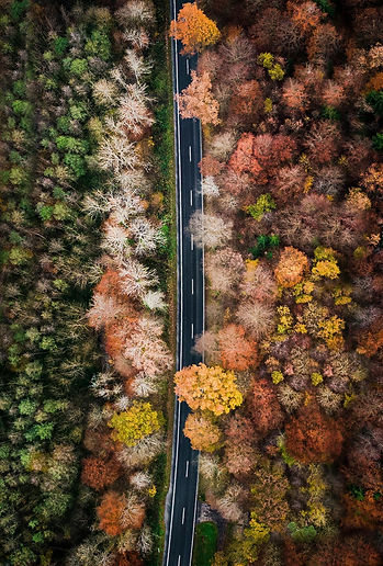 inner seasons.jpg