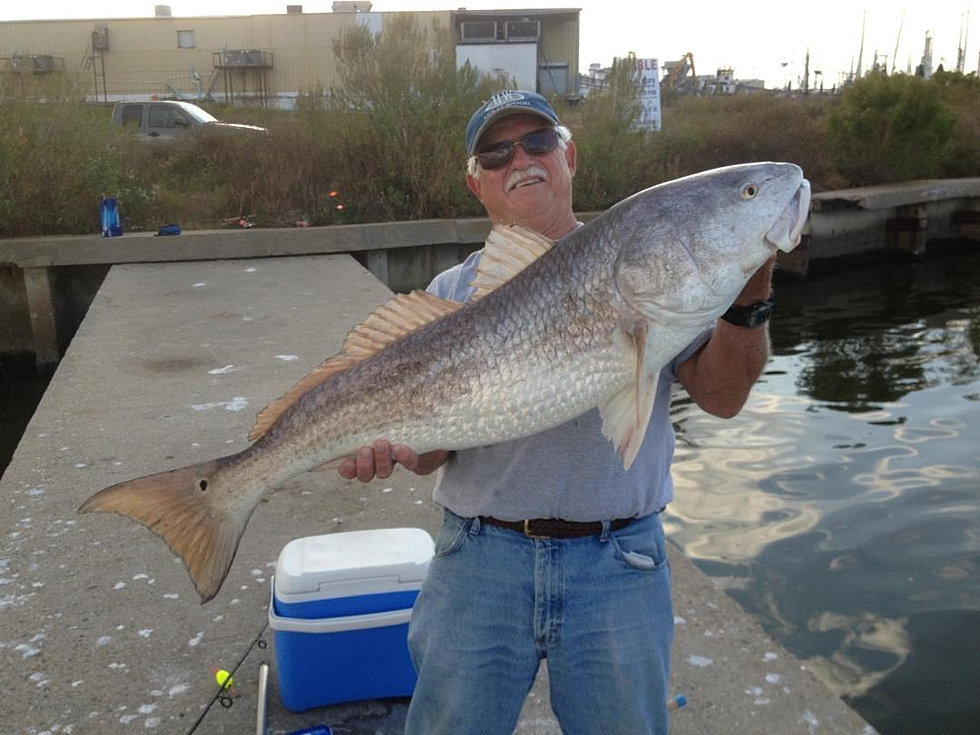 Miss hospitality deep sea fishing biloxi ms gallery for Saltwater fishing charters
