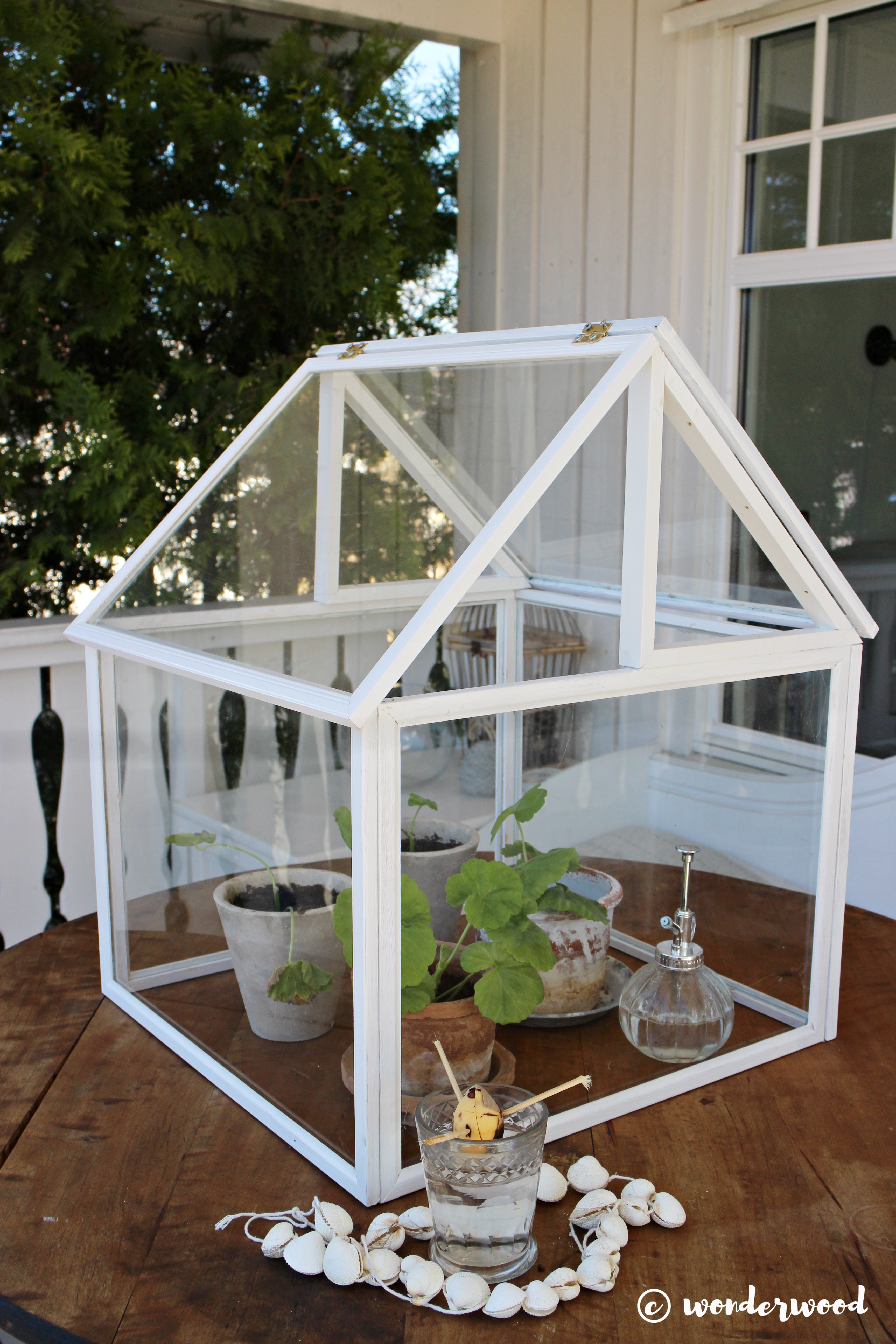 diy minidrivhus av bilderammer // diy photo frame greenhouse