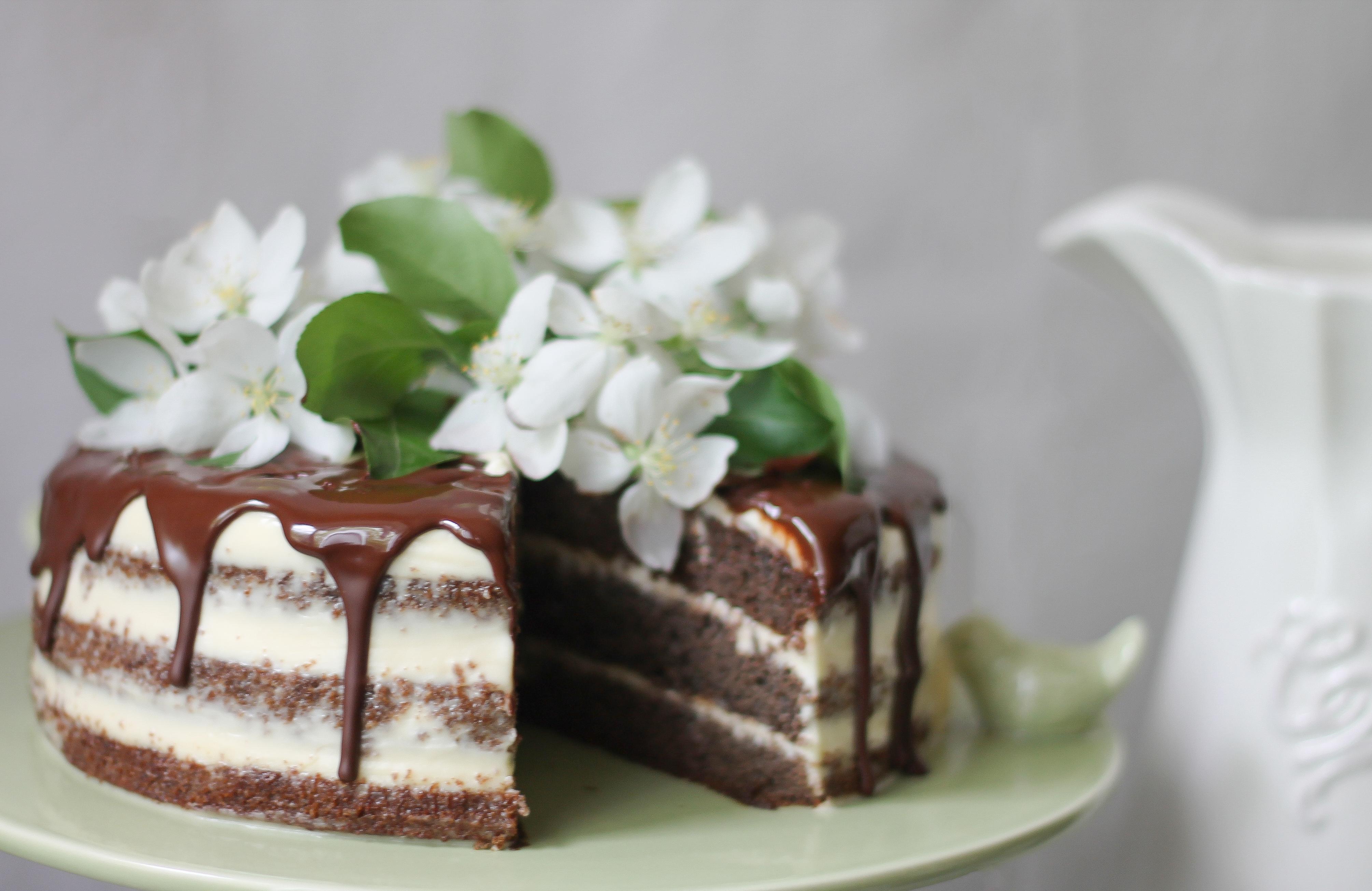 плюсом торт из свежей перемолотой черемухи термобелье входит отдельную