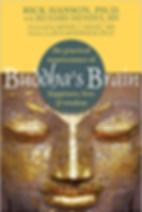 Buddhas_ Brain.png