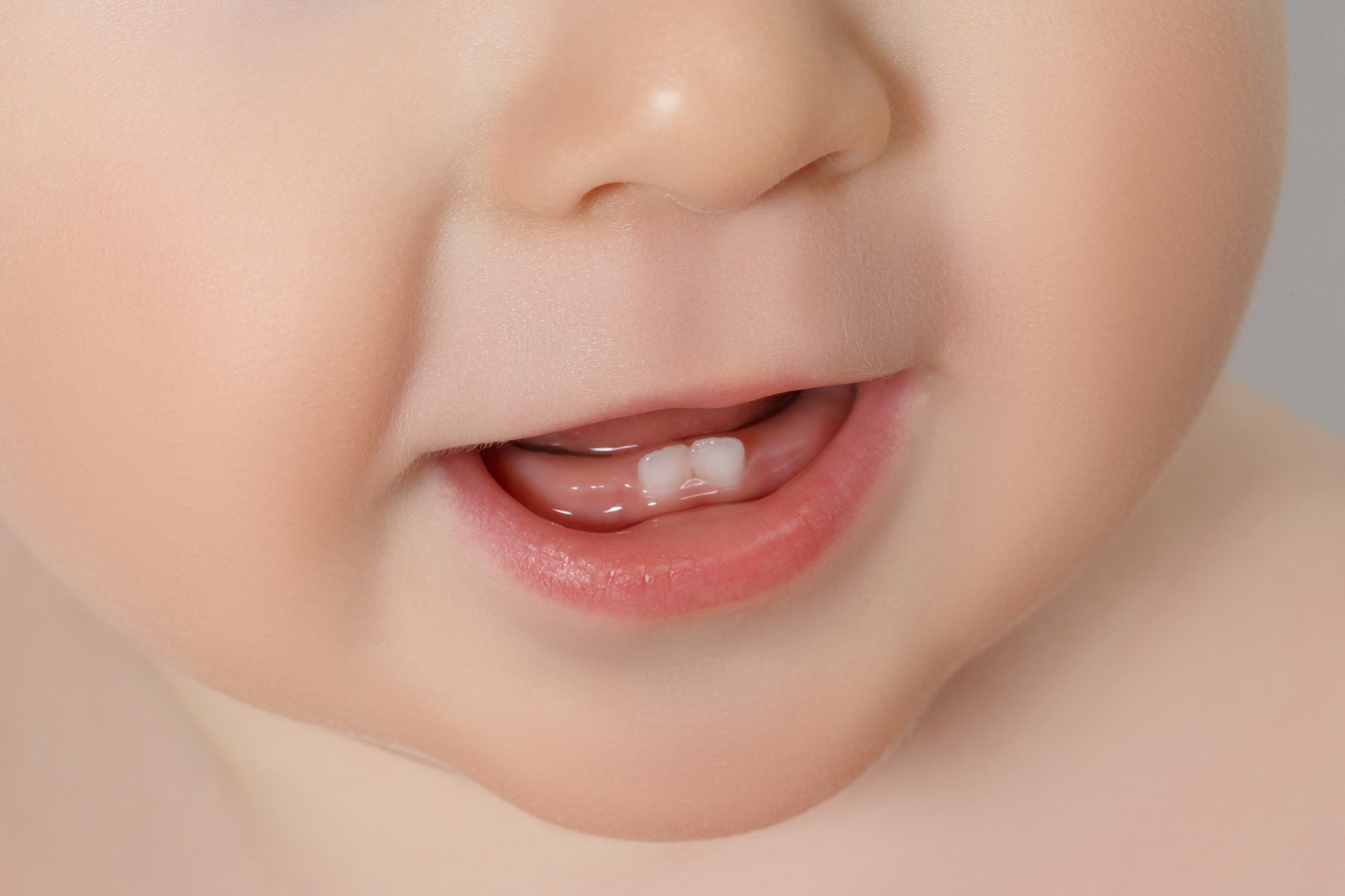 Teething and tooth development | Family Toolbox - Baby, child ...