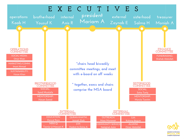 Copy of board structure (1).png