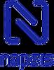 logo-napsis.png