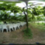 台中_酒堡庄_果樹下餐桌01.jpg
