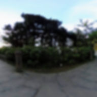 阿里山_阿里山森林遊樂區_森之道02.jpg