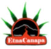 Logo_definit.jpg