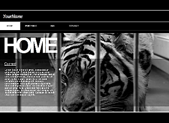 Craft Com Template - A dark, clean and sophisticated website design, this template is perfect for those who need to promote a portfolio on the web.