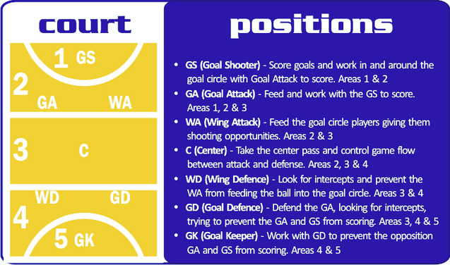 new to netball  learn the netball positions   sunnybank saints    new to netball  learn the netball positions