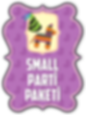 small-parti.png