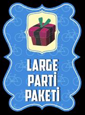 large-parti.png
