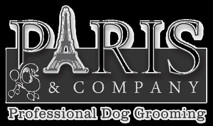 Paris and company dog grooming kitchener dog grooming kitchener solutioingenieria Choice Image