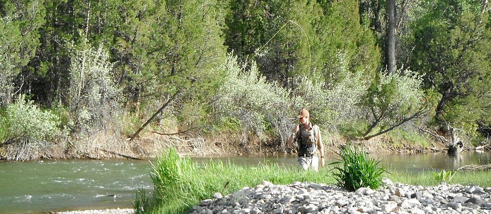 Guided montana fly fishing trips montana fishing company for Ruby river fishing report