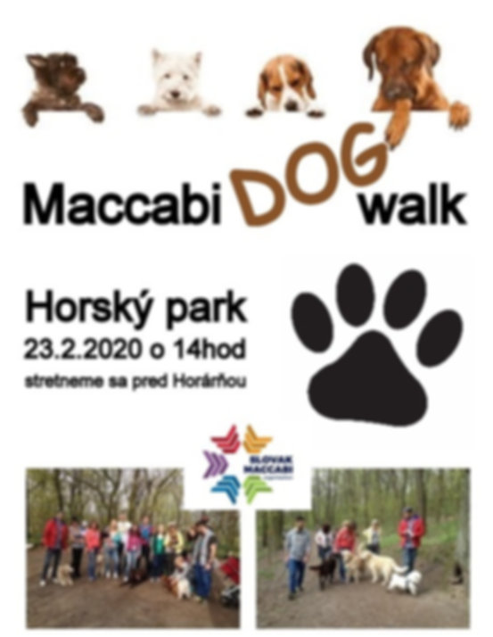 dog walk 2020.jpg
