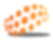 Trace Ortho Lab LLC Logo