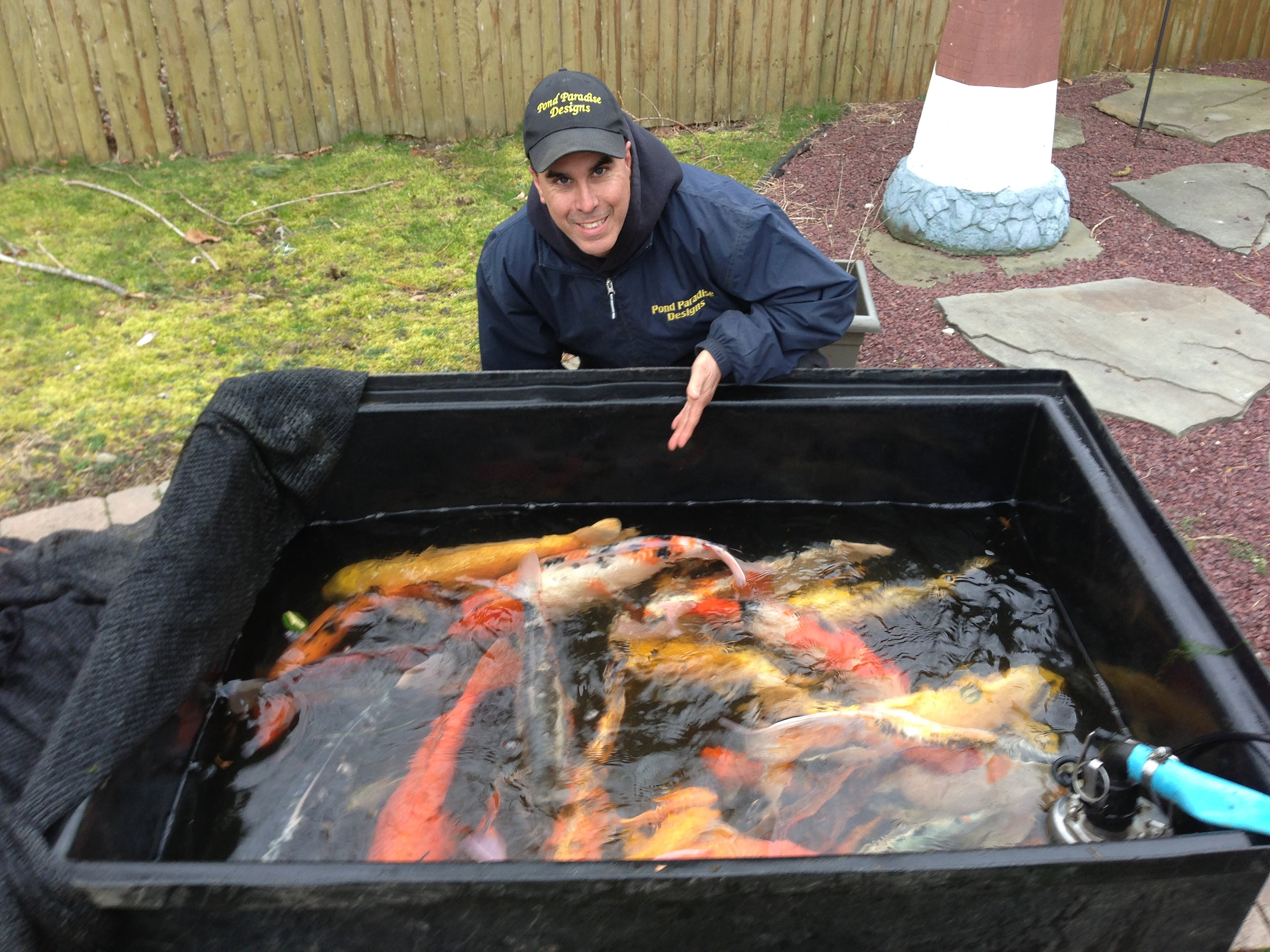 Pond paradise designs fish holding tub for Koi pond tubs