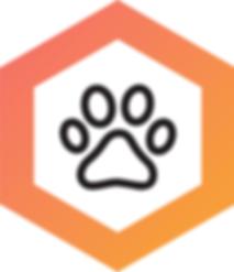 GingiShield_Paw_Icon_Option_V2_310x.png