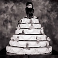 Monkey on a Wedding Cake